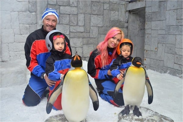 Familia Zenga